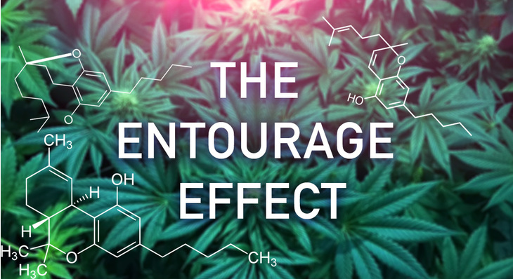 CBD Oil Decatur Indiana